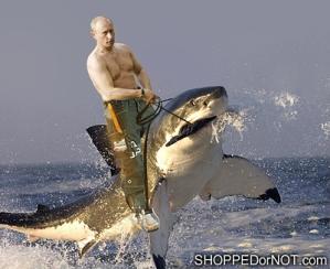 man-riding-shark-shopped-or-not
